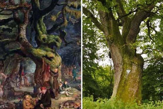 Vergleich Gemälde-Foto Buttnicher Eiche-20.0616